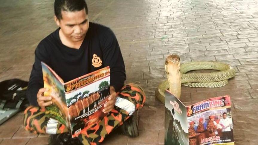 Muere famoso domador de serpientes tras mordedura de cobra