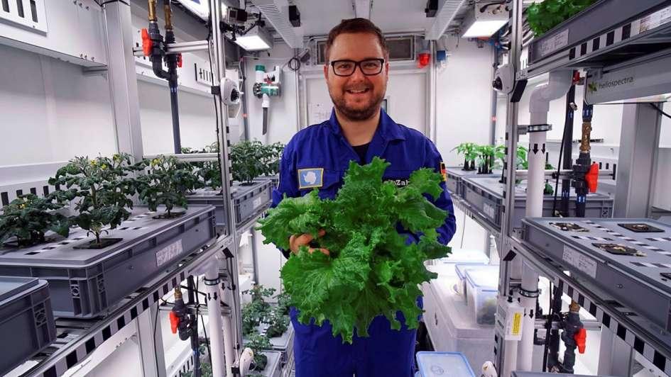 Resultado de imagen para Inédito: lograron cultivar verduras en la Antártida sin tierra, luz solar ni pesticidas