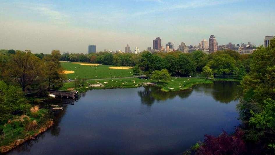 Central Park: historias en el pulmón verde de nueva york