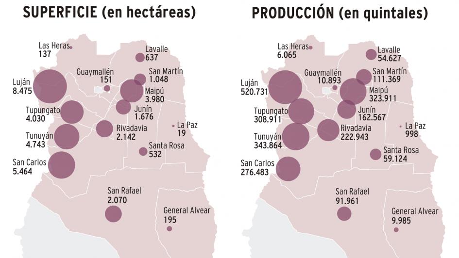InfoDatos - El mapa del Malbec argentino: cuánto y adónde se exporta