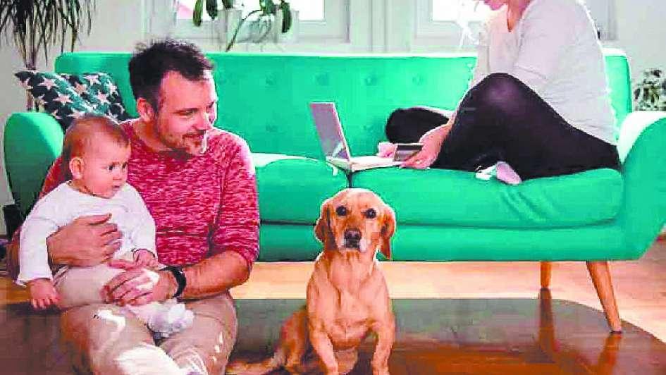 Mascotas: ¿cómo disfrutarlas y mantener limpia nuestra casa?