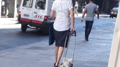 """El perrito """"vago"""" que pasean en carrito por el centro rosarino"""