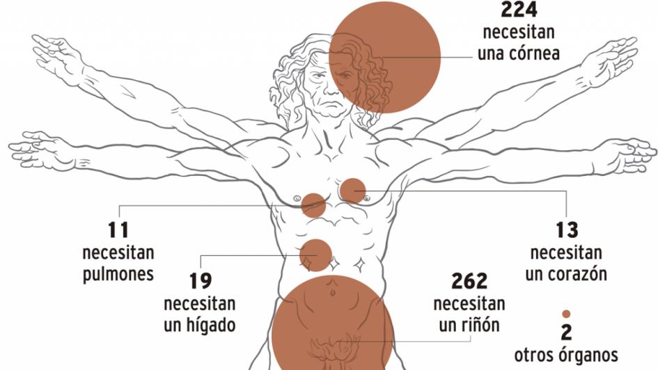 InfoDatos - Hay 531 mendocinos en lista de espera para un trasplante