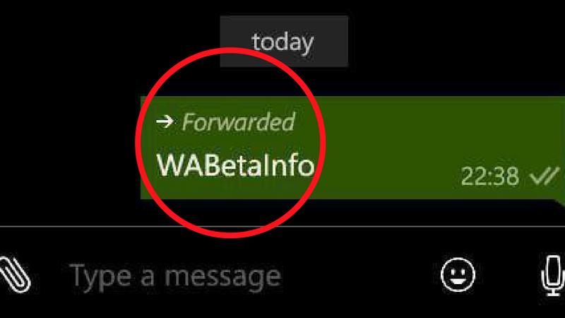 WhatsApp estrena función y te permitirá saber si reenviaron un mensaje tuyo