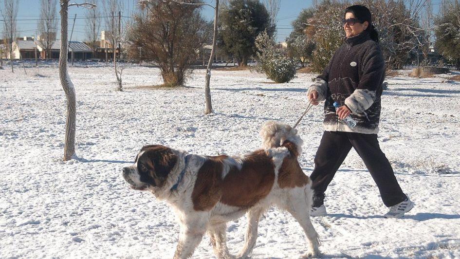 La nieve podría llegar mañana a algunas zonas del Gran Mendoza