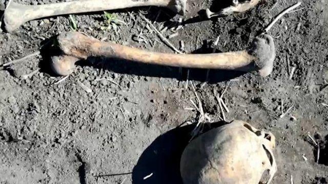 Macabro: Halló el cráneo del primer marido de su mujer (FOTOS)