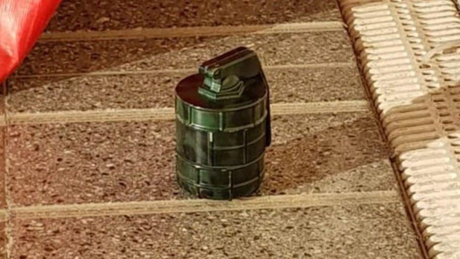 Evacuaron el aeropuerto de Mar del Plata por una granada que era un moledor de marihuana