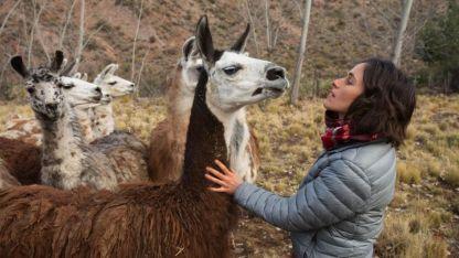 Sofía cumplió con todos los requisitos para adoptar a los animales.
