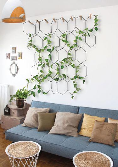 Plantas de interior ¡Necesidad de verde en toda estación!