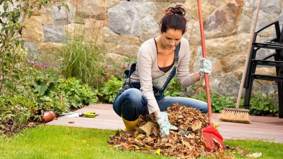 Cuidar a tu jardín, es quererlo