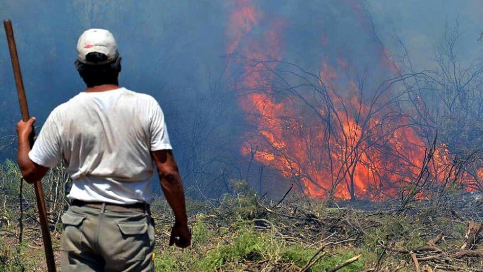 En 7 meses hubo 18 incendios por día en fincas del Sur de Mendoza