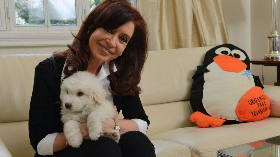 Centeno aseguró que CFK estaba en Olivos cuando llegaban los bolsos con dinero