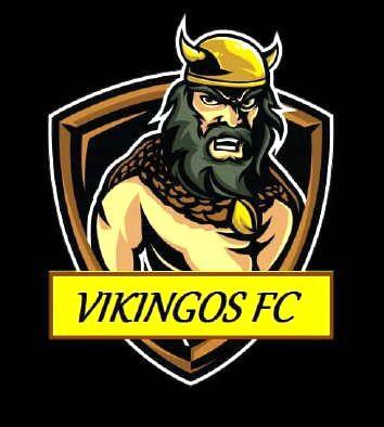 """El Mendocino que es un """"Vikingo"""" del gol"""