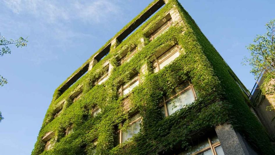 Arquitectura bioclimática: casas que ahorran