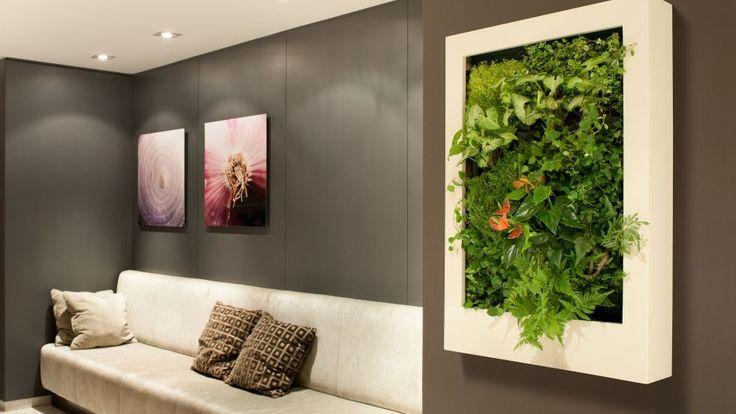 Llevar la naturaleza a todos tus espacios, tiene muchos beneficios