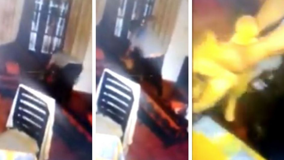 Godoy Cruz: golpeó brutalmente a un gato, lo filmaron, se viralizó y lo denunciaron