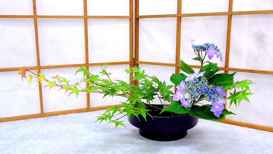 Ikebana: el arte japonés en arreglos florales