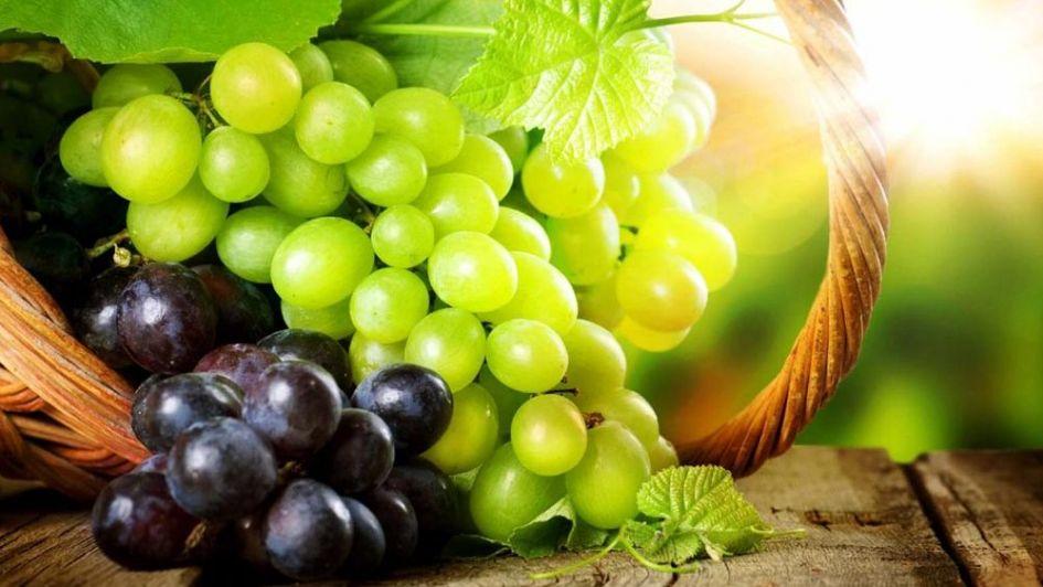 El 'efecto Trump' también complica la exportación de uva mendocina