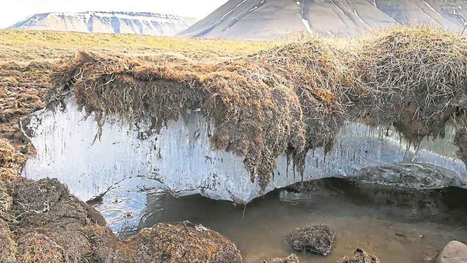Se descongela una capa de la tierra que tiene bacterias y virus milenarios