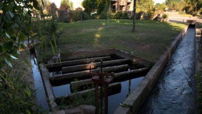 Luján. Vista de una rama, sistema que distribuye el agua por los distintos cauces de riego.