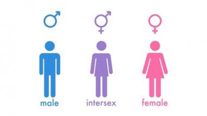 Personas que tienen simultáneamente características sexuales masculinas y femeninas.