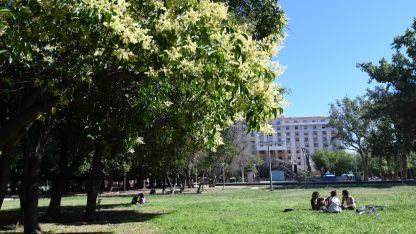 En la comuna sostienen que el Parque Cívico casi no es utilizado hoy por la gente.