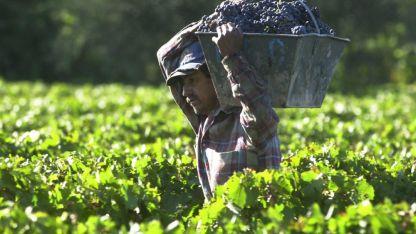 La mayoría de los referentes creen que con esta situación no habrá adelantos para la cosecha.