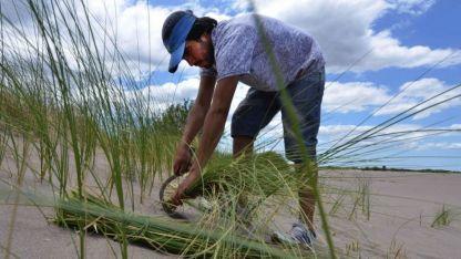 Juan Pérez aprendió a cortar junquillo a los 10 años. Cuando necesita dinero va a buscarlo a la orilla del río.