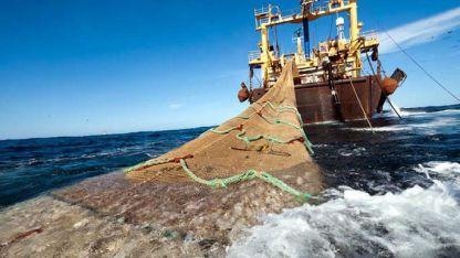 Avance. Se logró un menor número de incidentes por pesca ilegal.