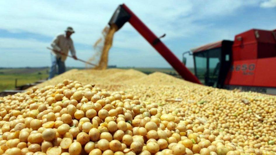 El rol del agro en el plan económico de Bolsonaro - Por Jorge Castro