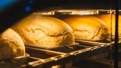 El robot panadero realiza todo el proceso