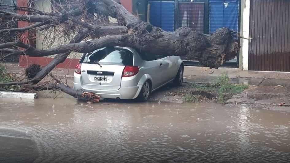 Una fuerte tormenta de lluvia y granizo causó destrozos en el Este mendocino