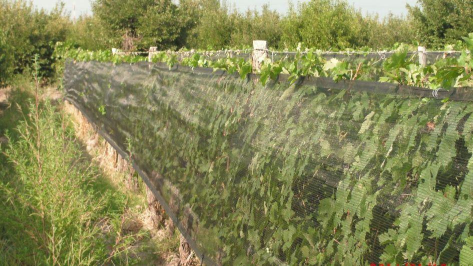 Fundación por el Agua, una alternativa para aprovechar mejor los recursos hídricos