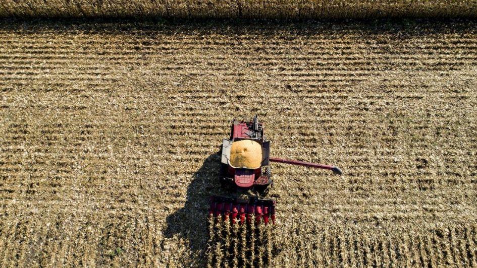 La incertidumbre sobre la guerra comercial golpea al mercado de granos