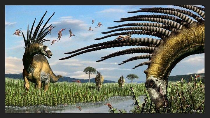 Hallazgo: especie de dinosaurio en Neuquén