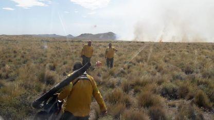 Intensos trabajos de bomberos para sofocar las llamas.