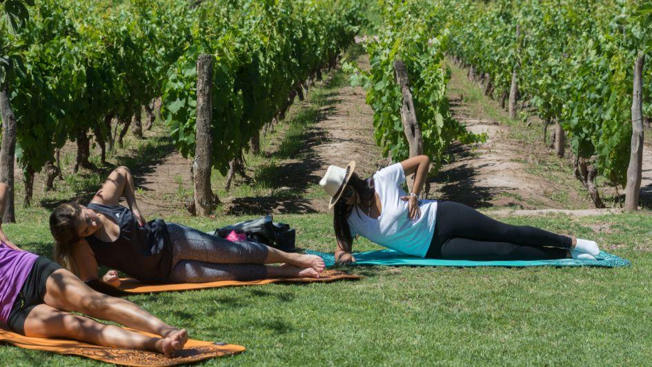 Yoga y vino, una experiencia gratificante para cuerpo y espíritu