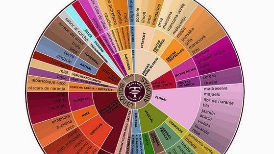 Primeros pasos en el arte de catar un vino