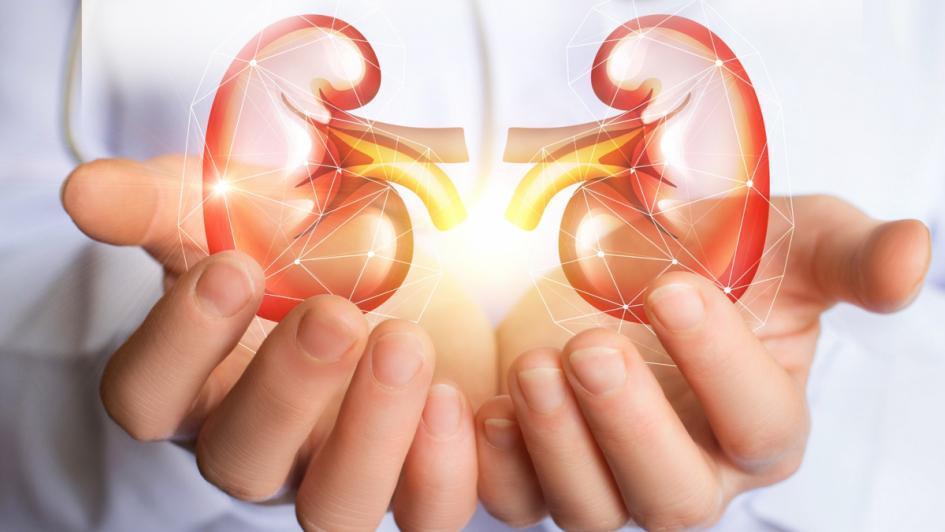 La prevención, clave para reducir las enfermedades renales durante la infancia