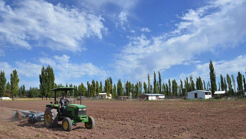 La Federación Agraria Argentina impulsa nuevas plataformas de venta
