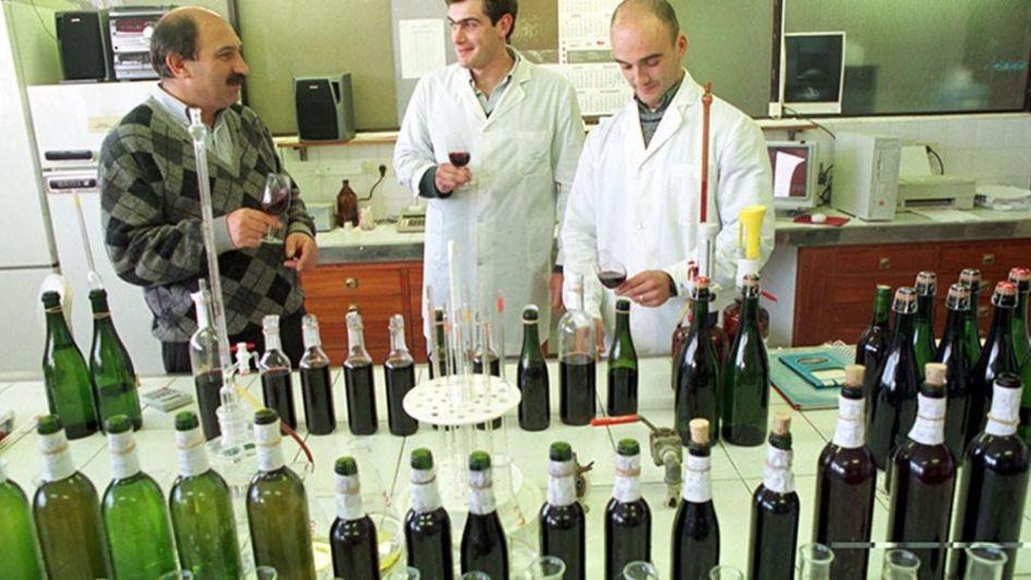 Nuestra ley vitivinícola  debe revisar sus objetivos - Por Comisión técnica de la UVA