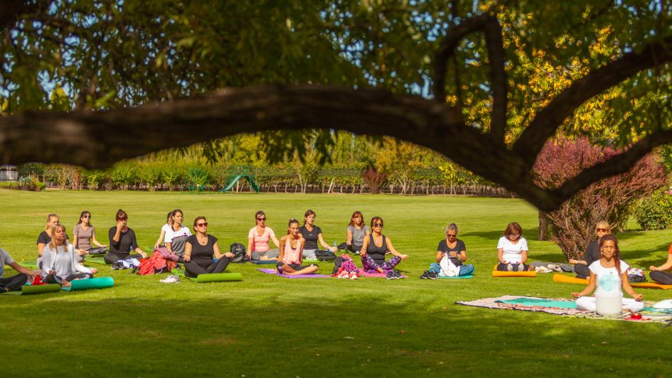 En el mes de la Vendimia, Yoga por los Caminos del Vino ya pasó por tres bodegas