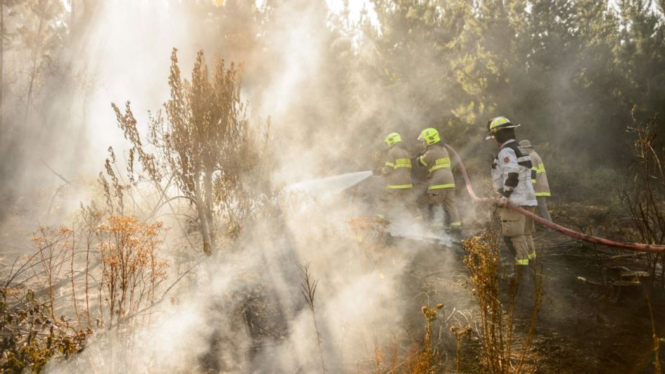 Mueren 30 bomberos que intentaban apagar un incendio en China