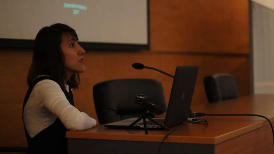 Dos reconocidos artistas chilenos detenidos acusados de terroristas — Papelón de Bullrich