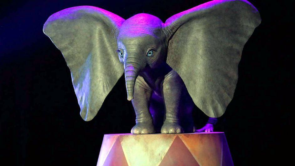 """Mariano Lacerna: el mendocino que hizo los efectos especiales de """"Dumbo"""""""