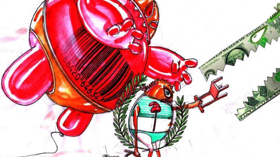 Sin plan económico, el Gobierno intenta domar dólar, tasas e inflación - Por R. Cavagnaro