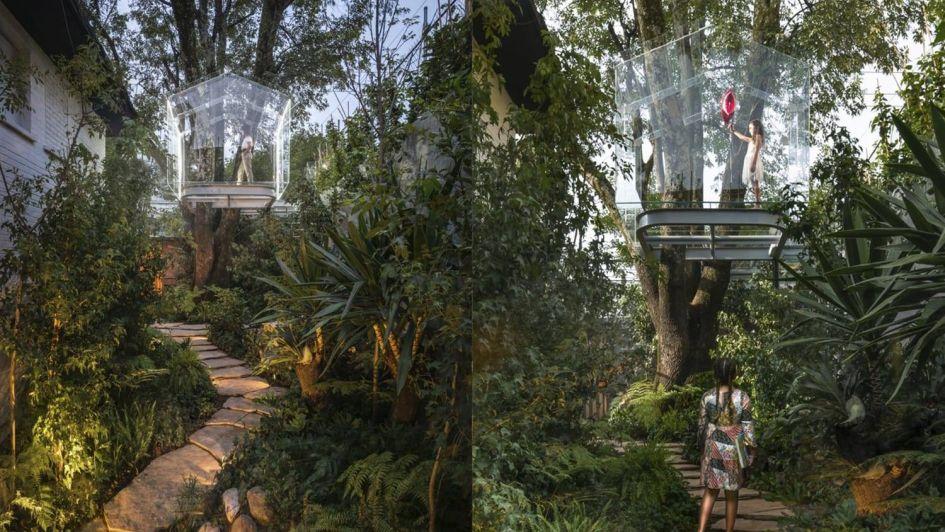 La fabulosa casa de árbol ¡sin paredes!