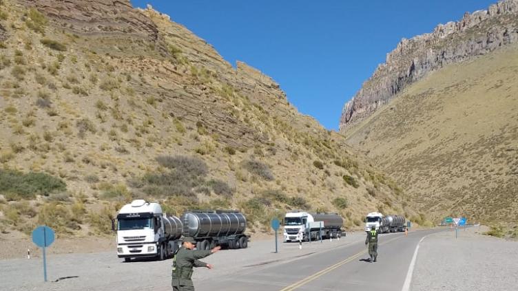 Paso Pehuenche: habilitado para cargas