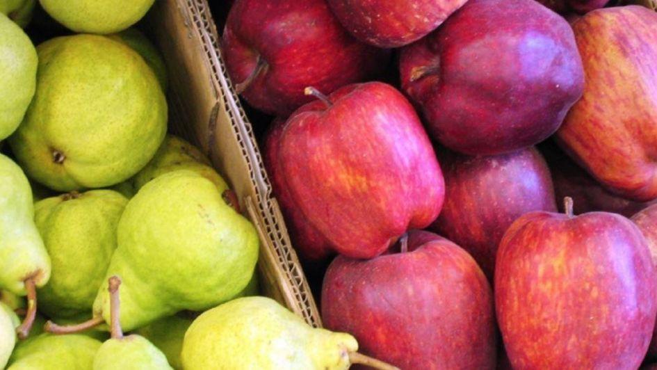 El Senado votó prorrogar la emergencia para peras y manzanas en Mendoza
