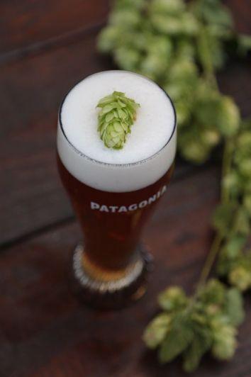 Wet Hop IPA, la cerveza con lúpulo recién cosechado